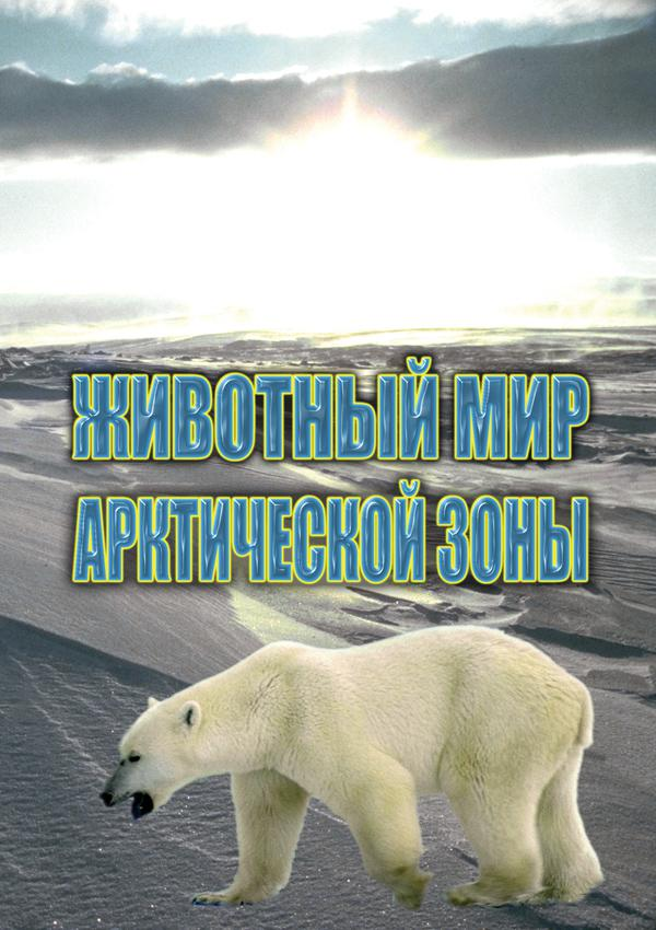 DVD. Животный мир Арктической зоны
