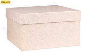 Одинарная квадратная коробка