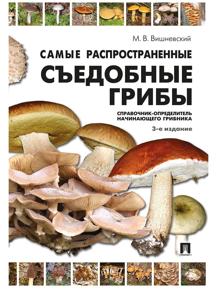 Самые распространенные съедобные грибы. Справочник-определитель начинающего грибника