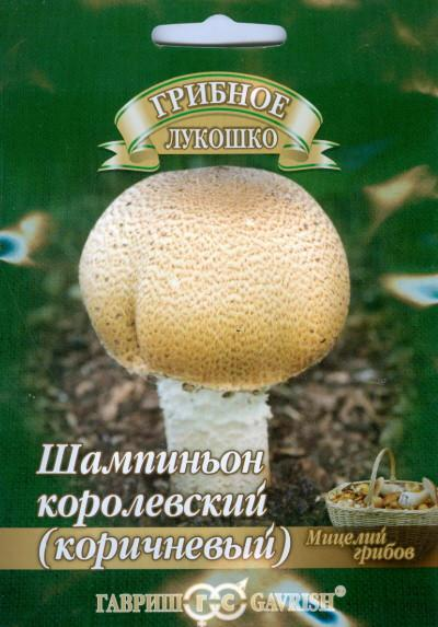 Семена. Шампиньон