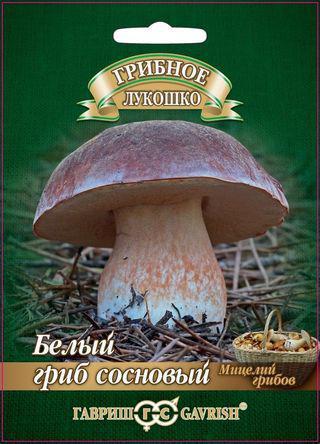Семена. Белый гриб