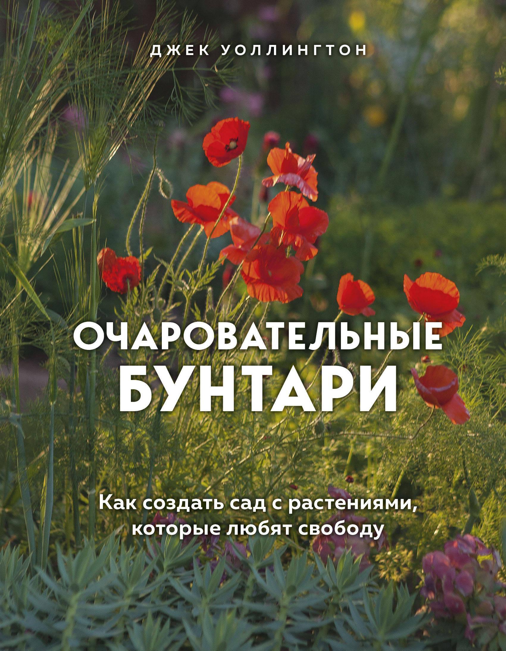 Очаровательные бунтари. Как создать сад с растениями, которые любят свободу