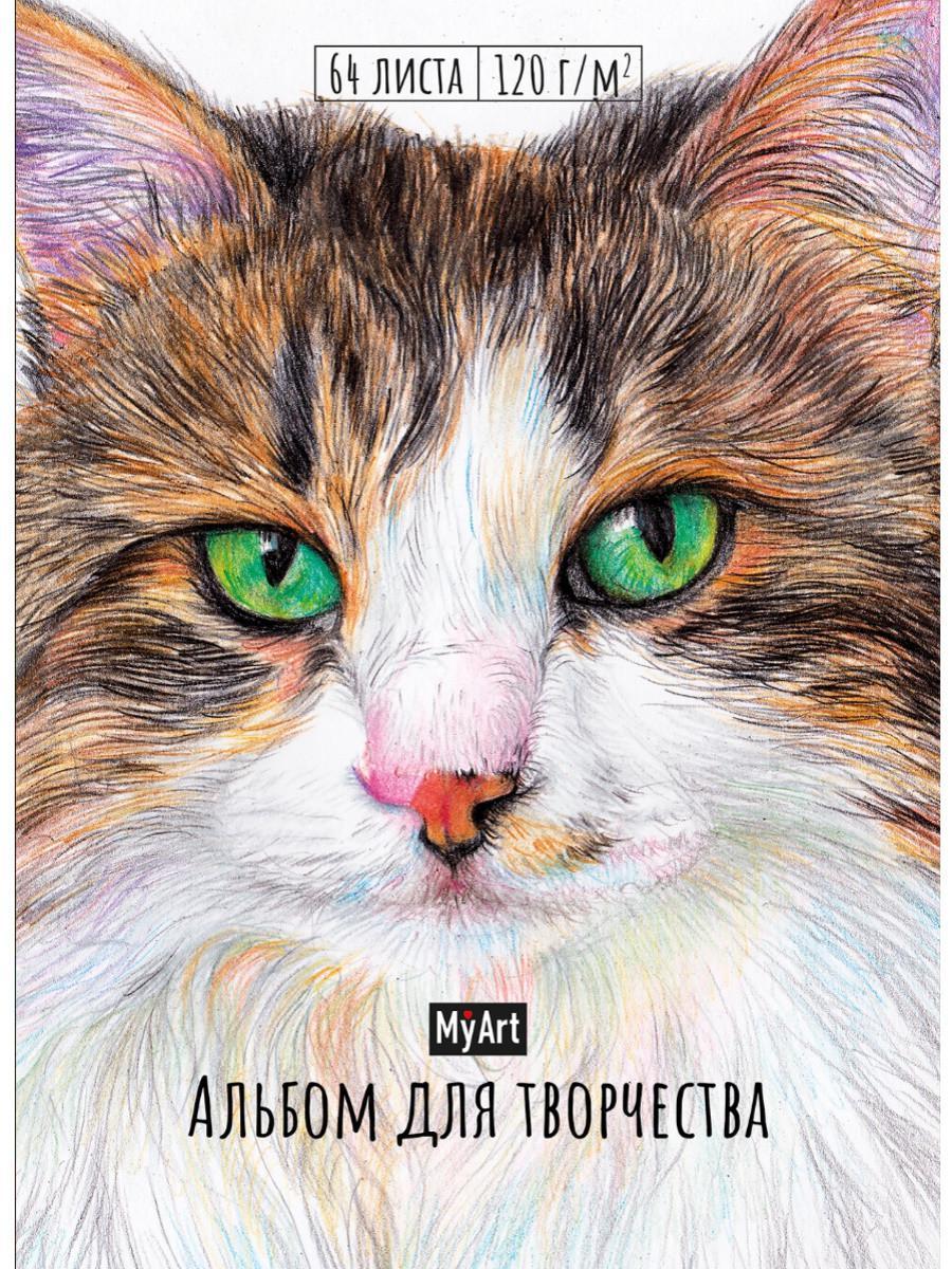 My art. Альбом для творчества. Кот