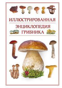 Иллюстрированная энциклопедия грибника