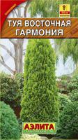 """Семена. Туя восточная """"Гармония"""", многолетник (вес: 0,1 г)"""