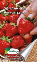 """Семена. Земляника """"Александрина"""" (вес: 0,04 г)"""