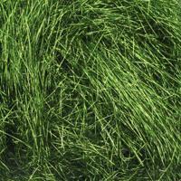 Наполнитель из шелковой бумаги, цвет: 17 травяной, 10 грамм, арт. AR387