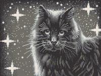 """Рисунок на ткани для вышивания бисером """"Черный кот"""", 29х39 см, арт. 7803"""