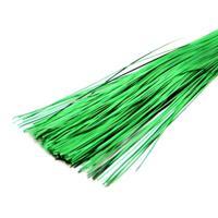 Бить плоская, цвет: зеленый