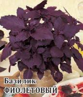 """Семена. Базилик """"Фиолетовый"""", среднеспелый (вес: 50,0 г)"""