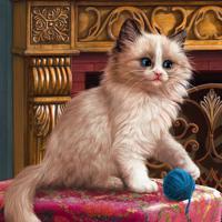 """Холст с красками """"Котёнок и клубок"""" (14 цветов)"""