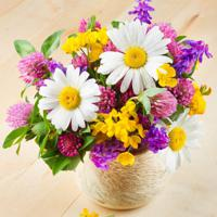 """Холст с красками """"Благоухающие цветы в вазе"""" (13 цветов)"""
