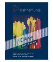 """Альбом для акрила """"College-Acrylic"""", 30х40 см, 10 листов"""