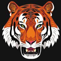 """Холст с красками """"Рычащий тигр"""" (10 цветов)"""