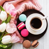 """Холст с красками """"Тёплое весеннее утро"""" (14 цветов)"""